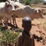 AFRICA MISSION, UN ESEMPIO DI COOPERAZIONE NEL MONDO
